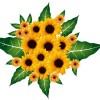 ひまわりの花束風、無料ベクターイラスト素材