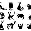 滑らかなラインが特長!キュートな黒猫の無料ベクターイラスト素材。