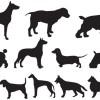 12種類の犬と海に関係する無料ベクターシルエット素材