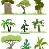 熱帯ジャングルを連想させる大木のクリップアート素材