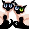 無料ベクタークリップアート。気品あるシャム猫のカップルを描いたイラスト素材。