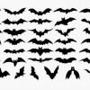ハロウィンにも使える!コウモリの無料ベクターシルエット素材