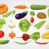緑黄色野菜(カボチャ・コーン・ジャガイモ・なす・ニンニク・インゲン・人参など)無料ベクタークリップアート素材。