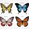 アゲハチョウなど4種類の蝶の無料ベクターイラスト素材