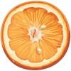 無料ベクターイラスト素材。カットオレンジのイラスト