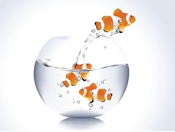 Amphiprion-ocellaris 金魚鉢とカクレクマノミ。無料ベクターイラスト素材