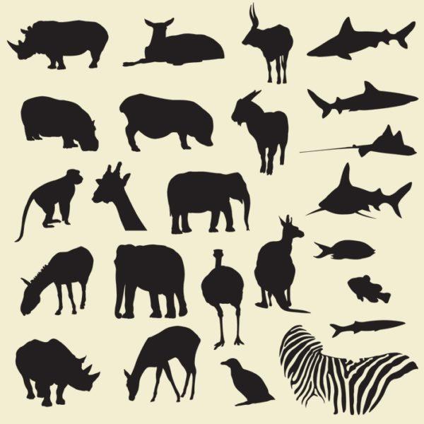 Safari-Zoo-Animals-600x600 サファリや海などに生息する野生動物の無料ベクターシルエット素材