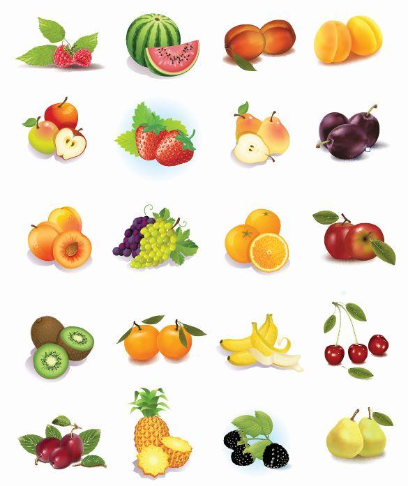 Set-of-fruits-Vector-Graphics リアルなフレッシュフルーツの無料ベクタークリップアート素材