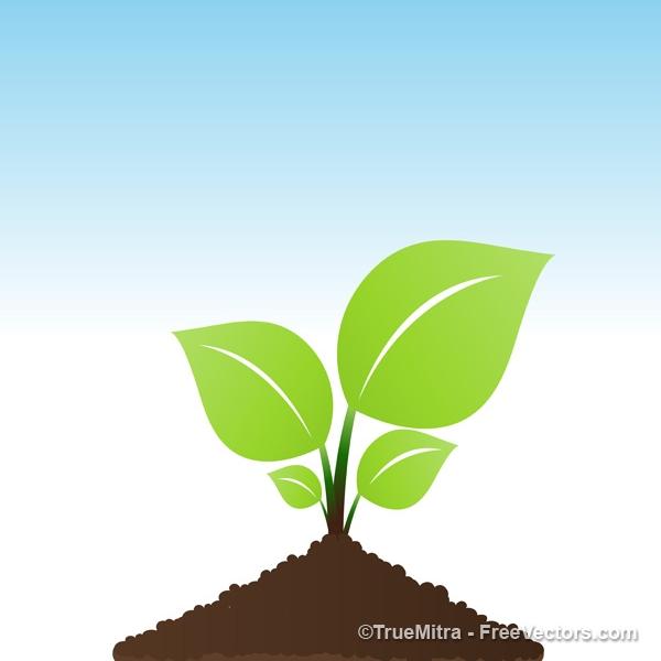 Vector-Plant 植物の芽が出たところを描いた無料ベクタークリップアート素材