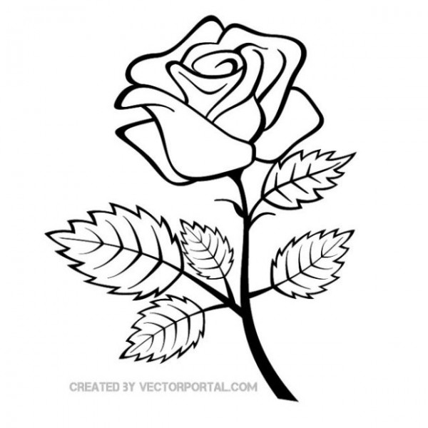 Vector-Rose-Outline-Image-600x600 ラインアート風バラの無料イラスト素材