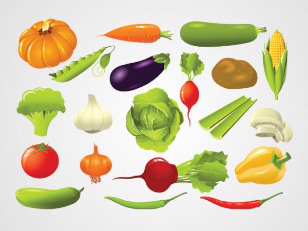 Vegetable-Vector-Illustrations-600x450 緑黄色野菜(カボチャ・コーン・ジャガイモ・なす・ニンニク・インゲン・人参など)無料ベクタークリップアート素材。