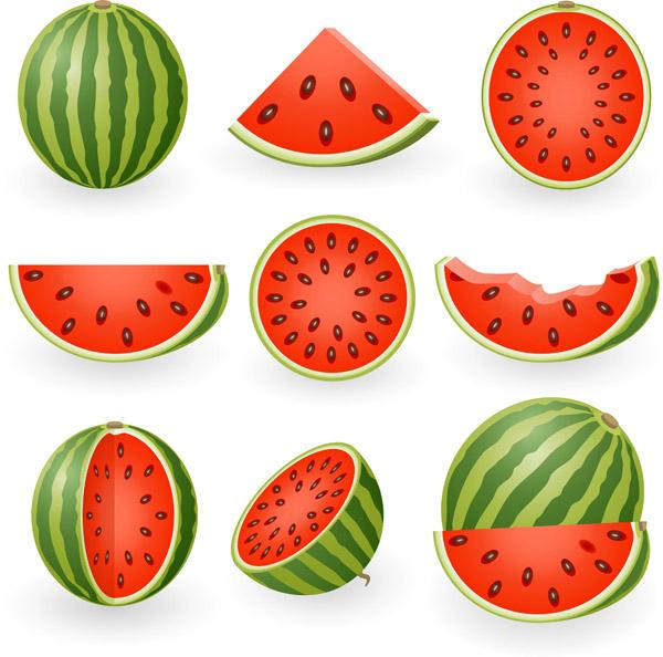 Watermelon-clip-art-Vector-misc1 クオリティーが高く色鮮やかなスイカのベクターイラスト素材