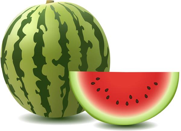 Watermelon-clip-art-Vector-misc2 クオリティーが高く色鮮やかなスイカのベクターイラスト素材