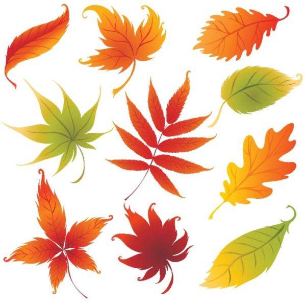 colorful_leaves-600x599 秋のイラスト。10種類の紅葉した落ち葉のベクタークリップアート素材