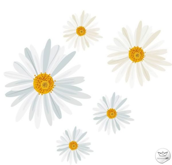 daisy_vector_recursos2d-600x578 デイジー花の無料ベクターイラスト素材