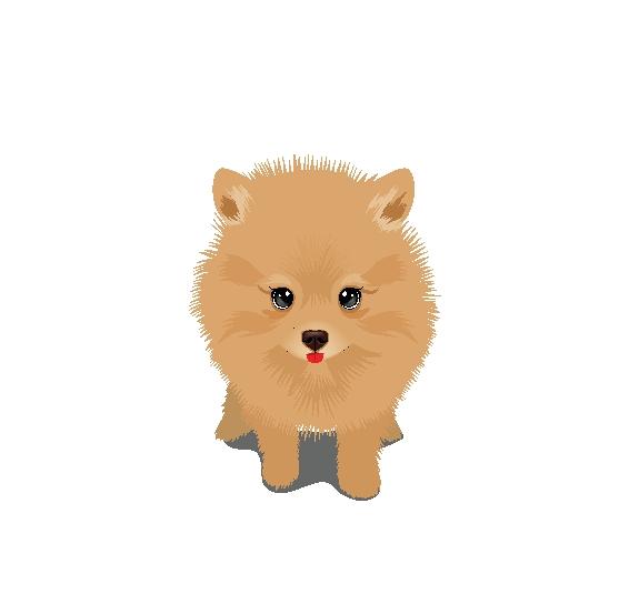 dog-like-a-lion-1 かわいいポメラニアンの子犬。無料ベクタークリップアート素材