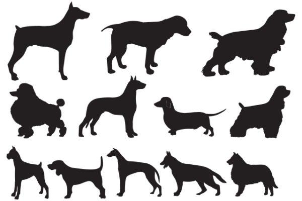 dogvec-600x400 12種類の犬と海に関係する無料ベクターシルエット素材