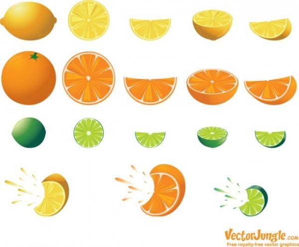 fruit_citrus-600x497 レモン・ライム・オレンジを絞ったところ。無料ベクタークリップアート素材