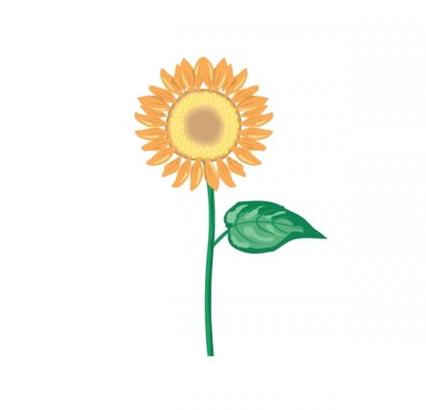 podsolnuh-flower-9-600x578 シンプルひまわりの無料ベクタークリップアート素材