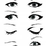 Female-Eye-Vector
