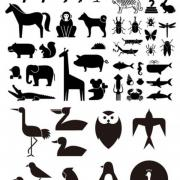 49 Various elements of vector silhouette animal