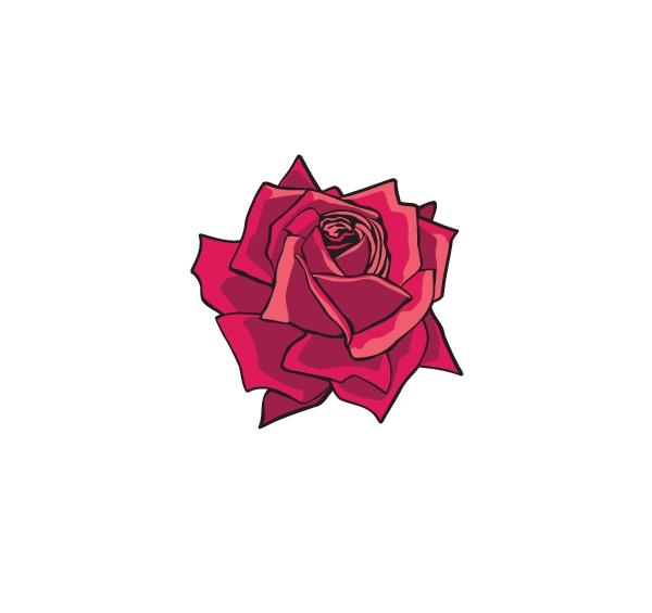 rose-flower-vetor-2 薔薇(ローズ)の無料ベクターイラスト素材