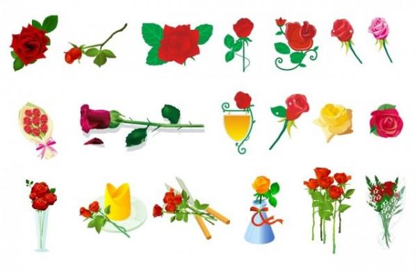 rose-vector