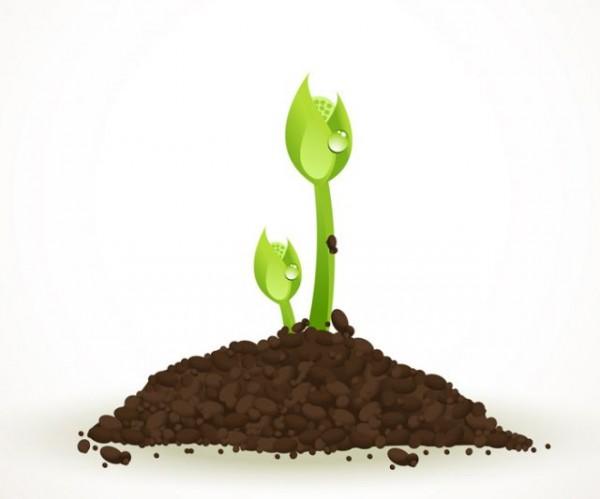 sprouts-vector-600x499 芽生え生命のパワーを感じる植物のベクターイラスト素材