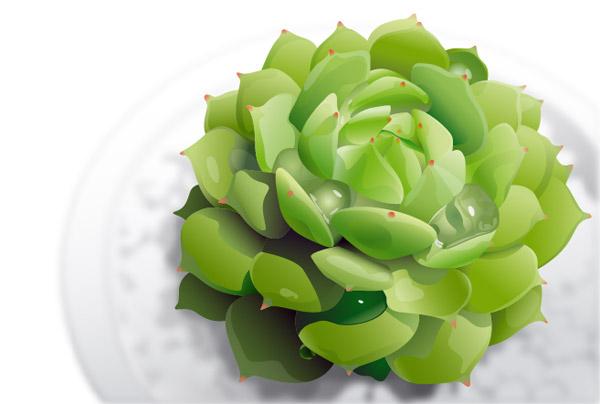 vector-succulent-plants 多肉植物(ヤネバンダイソウ?センペルビウム?)の無料ベクターイラスト素材