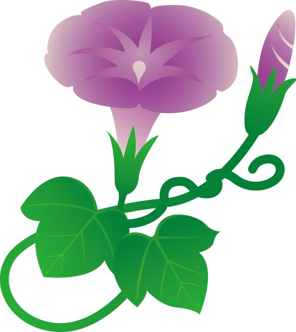viun-flower-7 綺麗なアサガオの無料ベクターイラスト素材